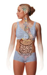 Image showing the effects of bulimia on the body and mind